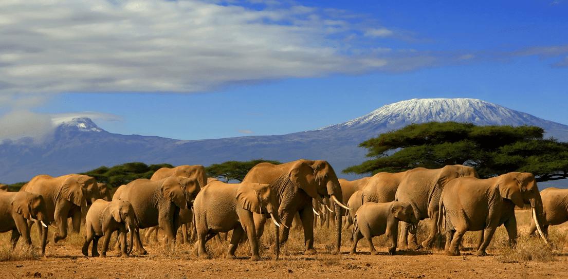 Nairobis Kenija
